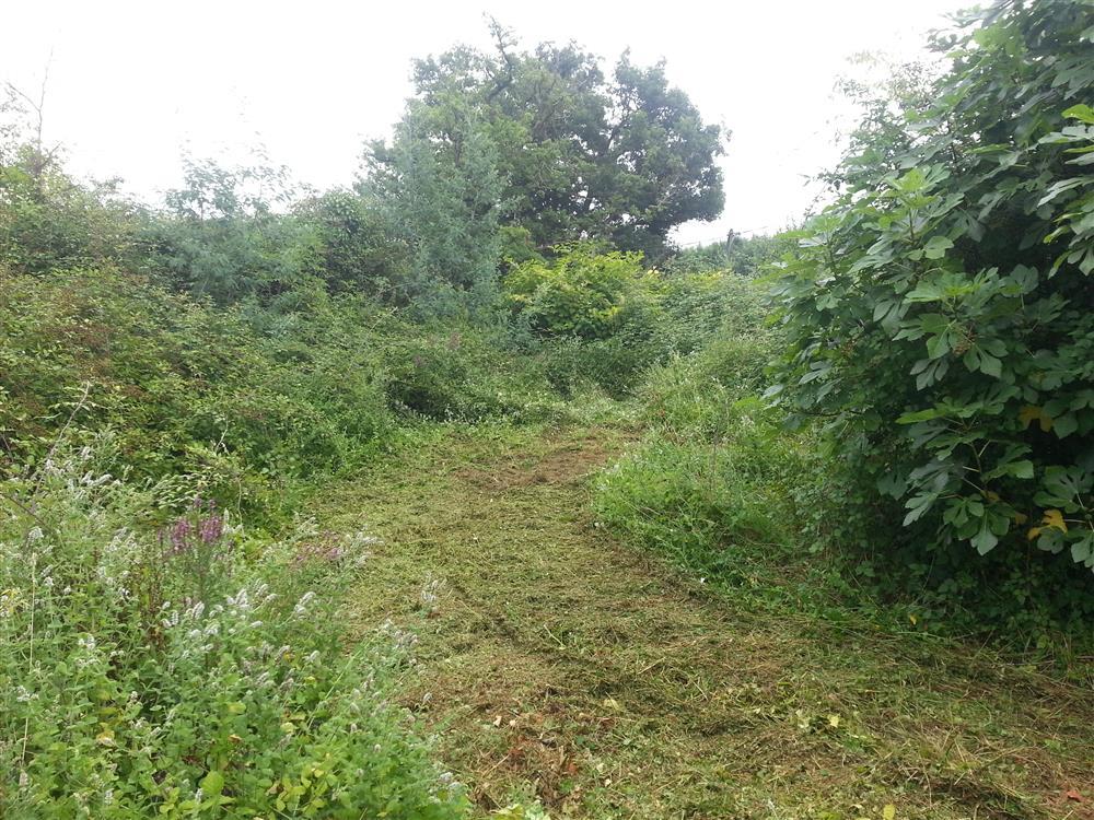 Livraison bois pr s de hagetmau entretien parcs et for Entretien jardin landes